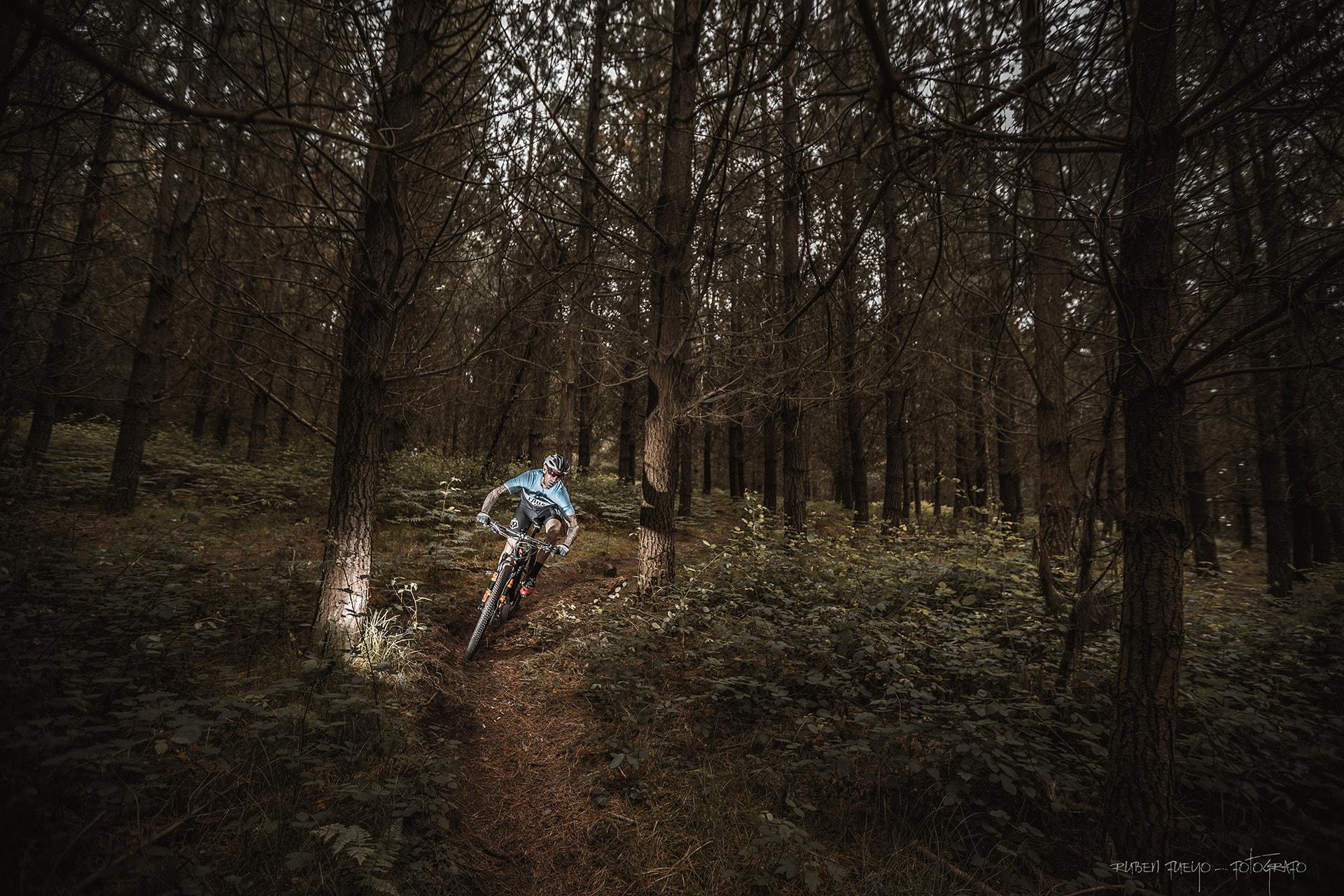Bosque Activo